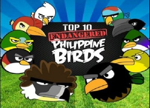 endangered birds in the philippines