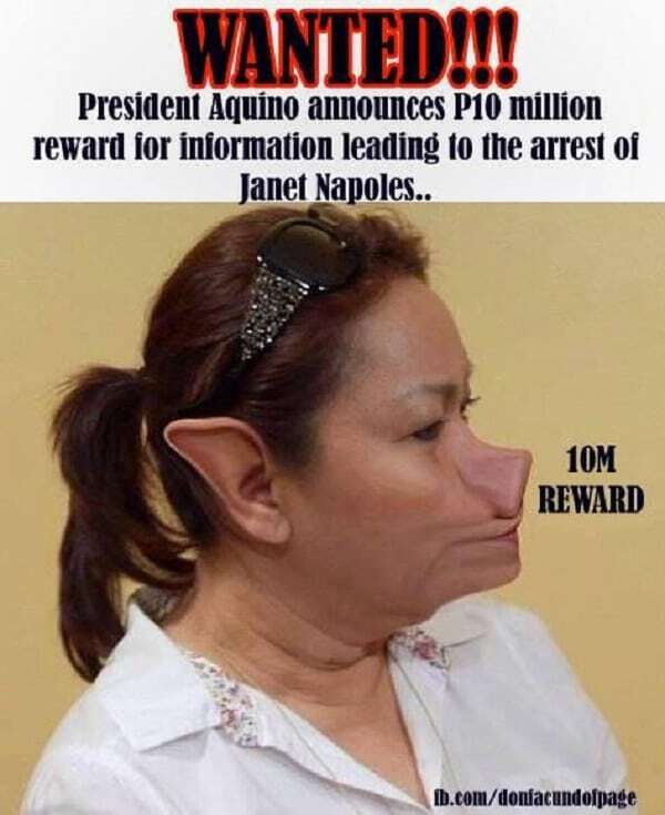 pork barrel scam + janeth lim napoles