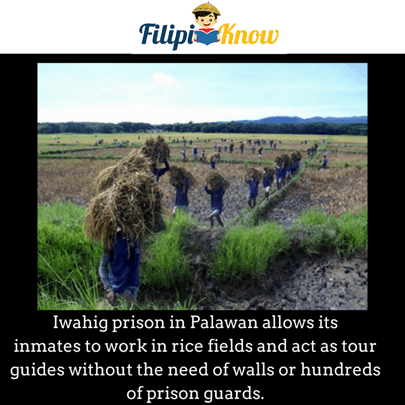 Iwahig Prison and Penal Farm in Puerto Princesa, Palawan