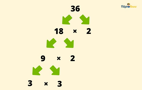 factors and multiples 5