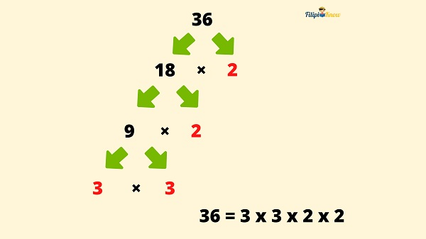 factors and multiples 6