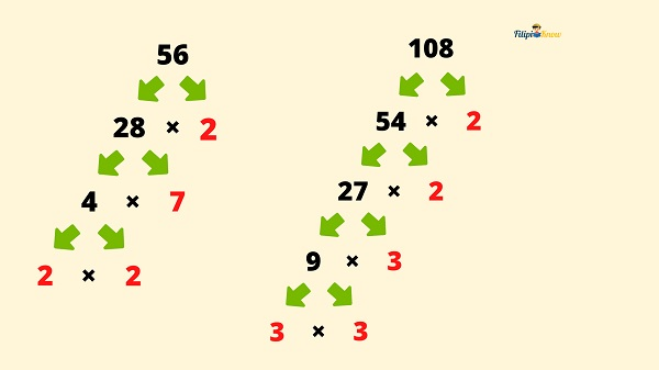 factors and multiples 7